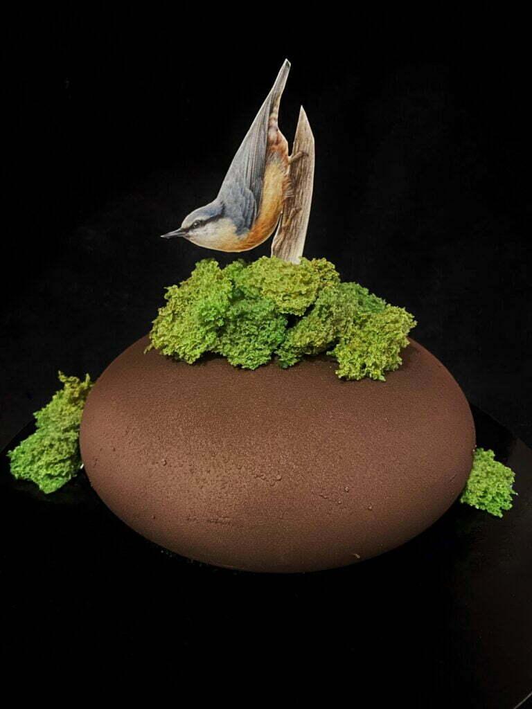 Tort musowy – kowalik